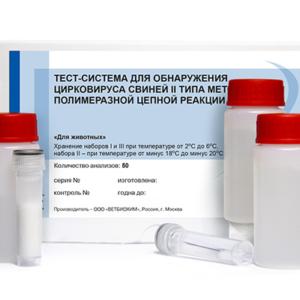Тест-система для обнаружения цирковируса свиней ii типа методом полимеразной цепной реакции