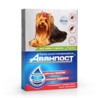 avanpost-drops-dogs-5-kg-600x600-srgb_1546583682