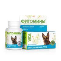 phytomins-teeth-dogs-600x600-srgb