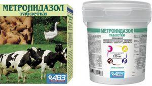 Метронидазол АВЗ